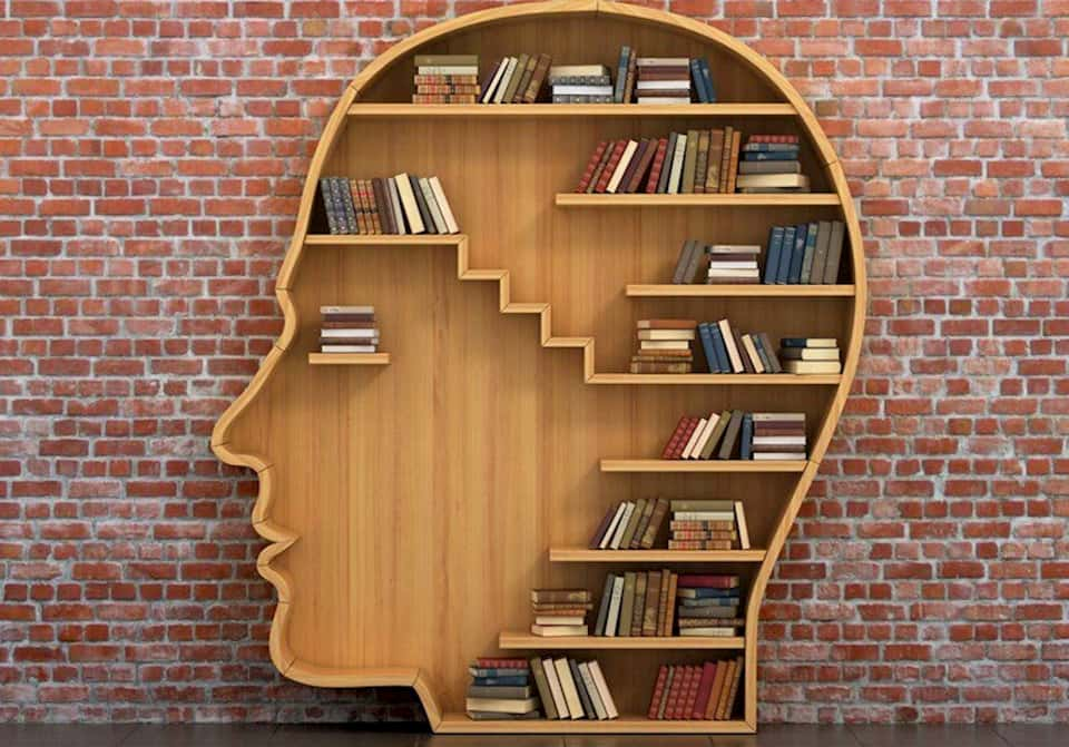 Prateleira de Livros em formato de cabeça humana